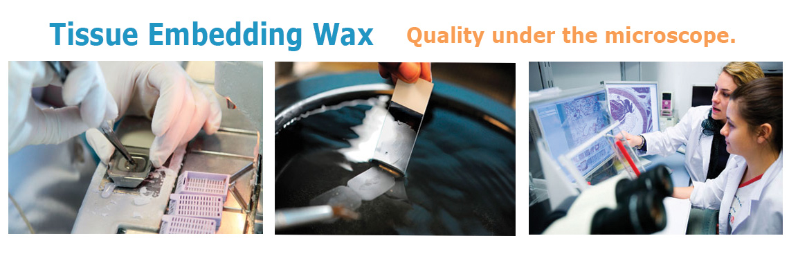 Tissue Embedding Wax